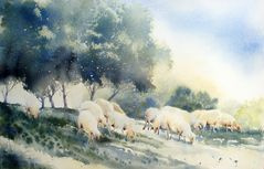 Animaux (3) - Moutons