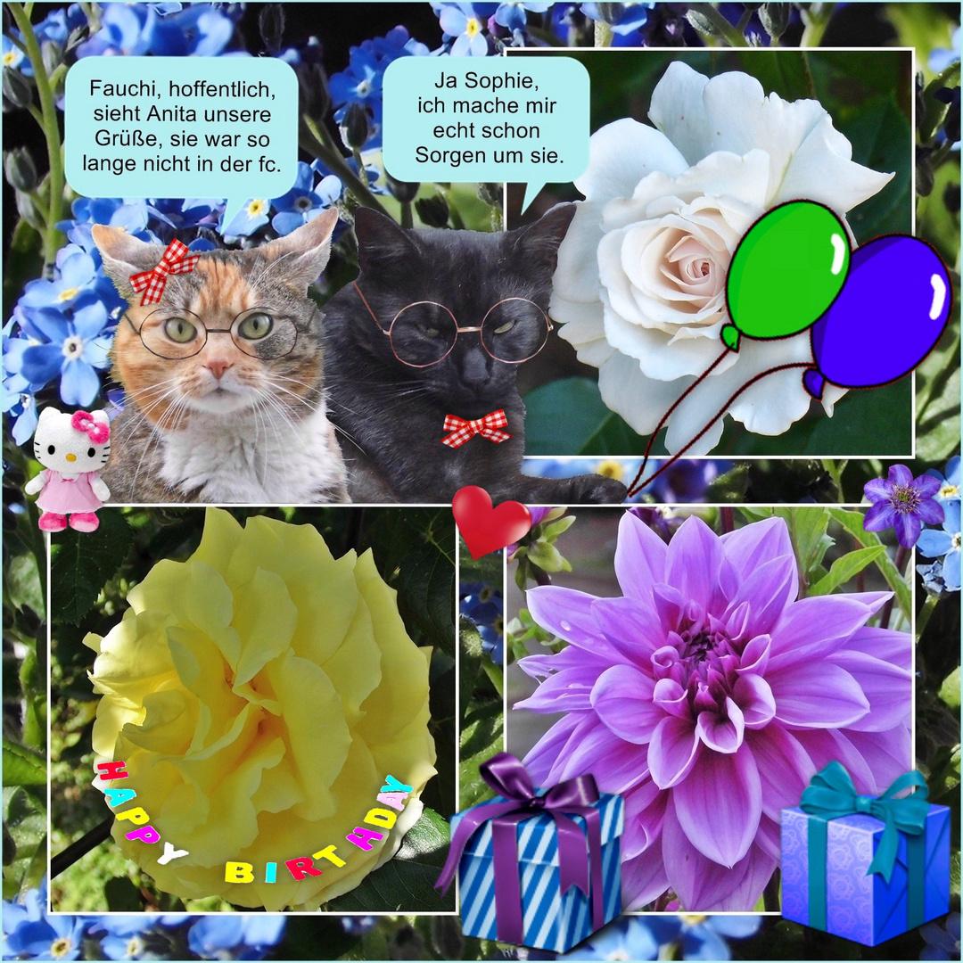 Anita-Elisabeth hat Geburtstag