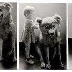 Anja und der böse Wolf