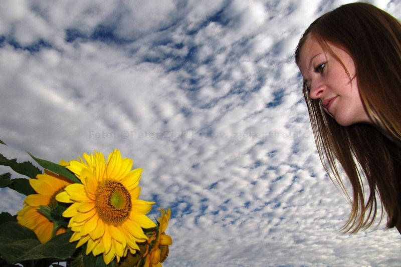 Ann-Ka und Sonnenblume