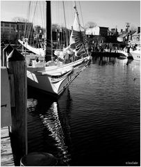 Annapolis No. 11 - The City Dock