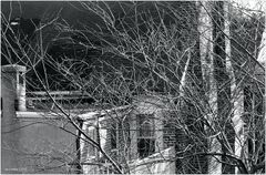 Annapolis No.17 - Old Brick and Winter Trees