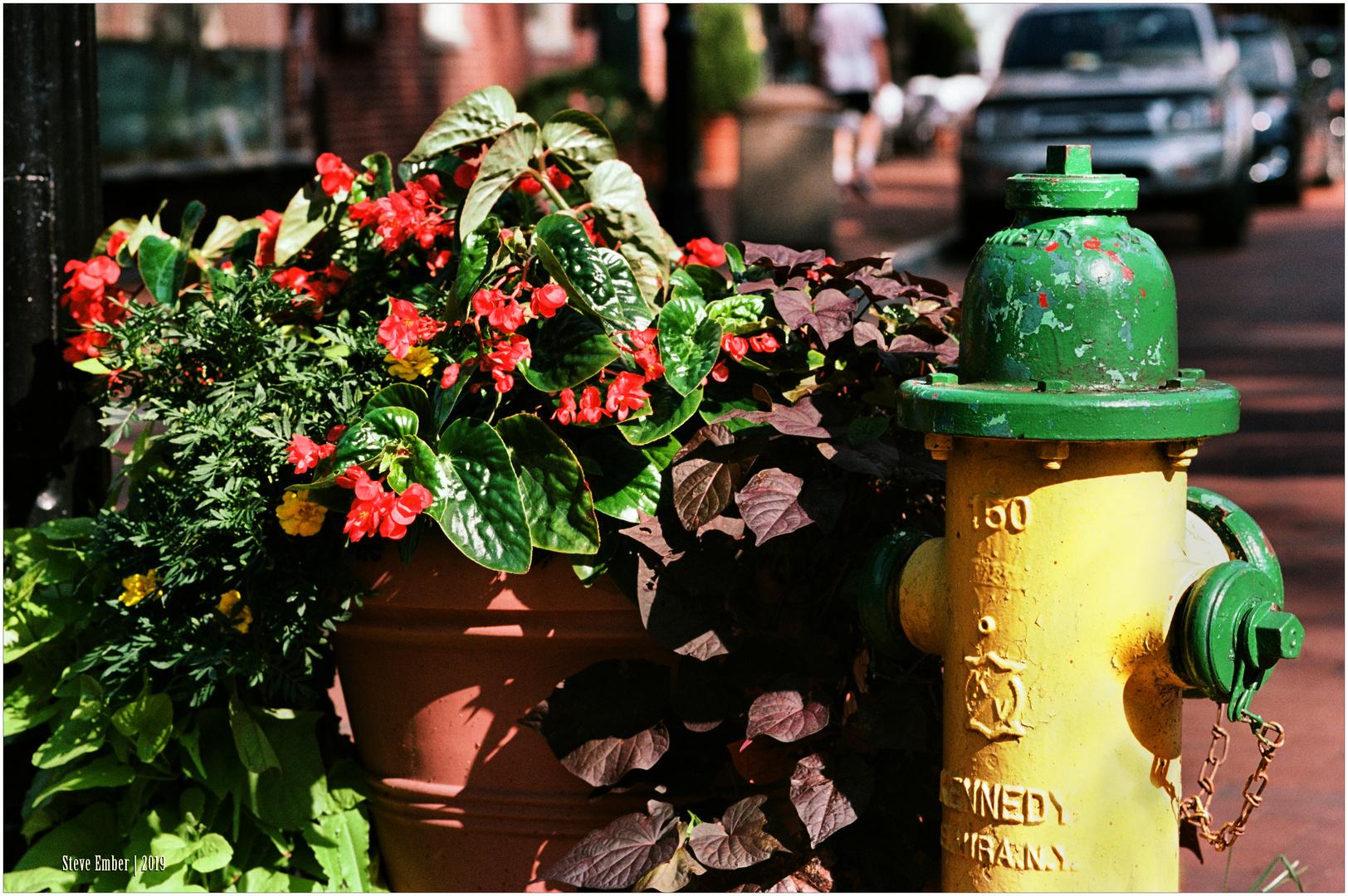 Annapolis No.21 - Flowerpot and Fireplug