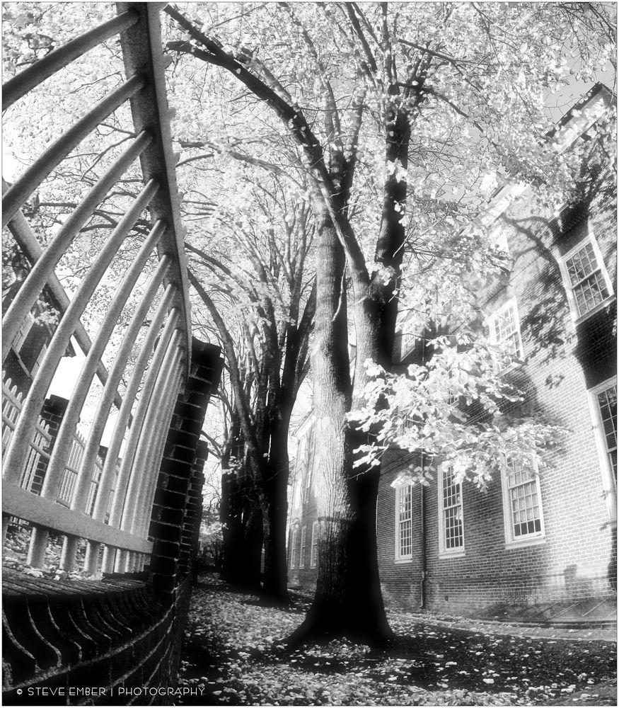 Annapolis No.28 - A Late Autumn Impression
