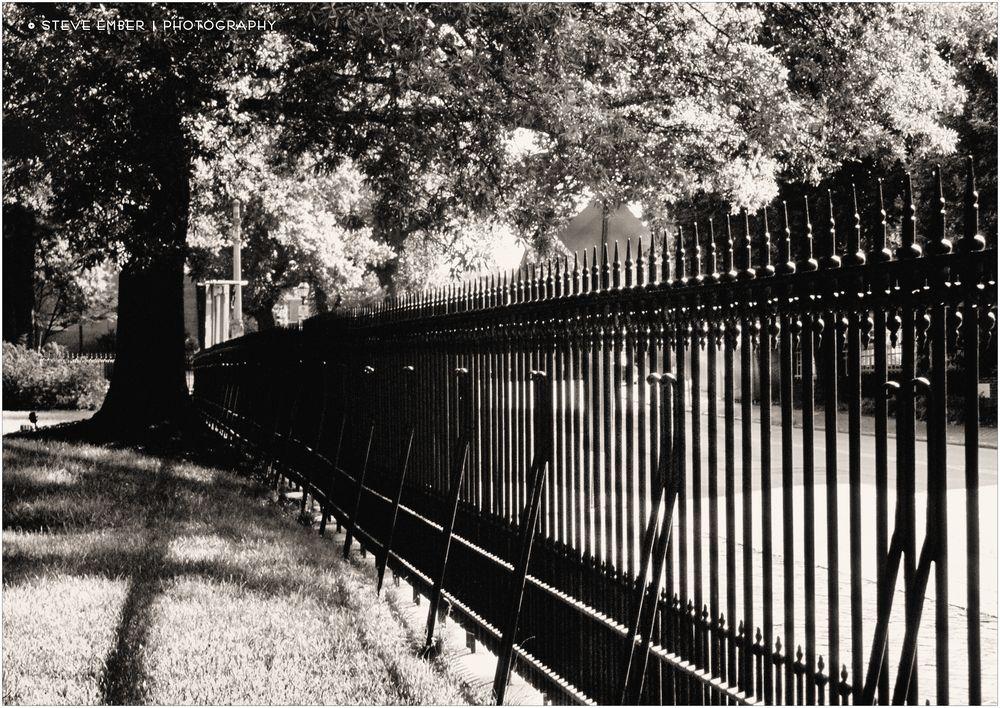 Annapolis Summer - No. 1