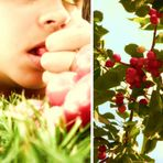 Années de cerises rouges met le rire sur les bouches.