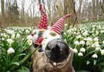 Annette hat Geburtstag