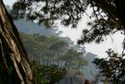 Another view from Kabak - Faralya