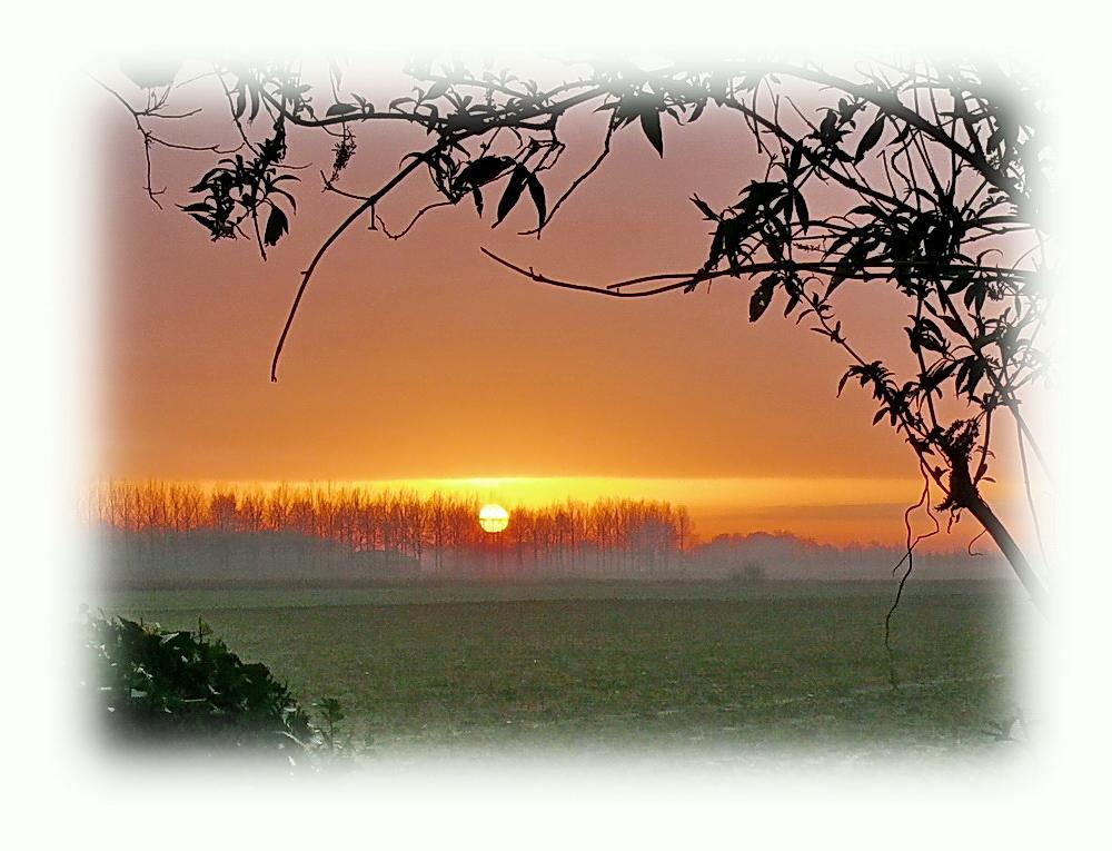 another winter sunrise seen from our garden (23rd December in west Zeeuws-Vlaandern)