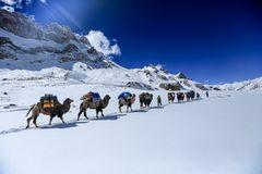 Ans Ende der Welt (17)- Karawane im Schnee