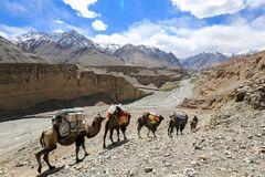 Ans Ende der Welt (8)- Zum K2