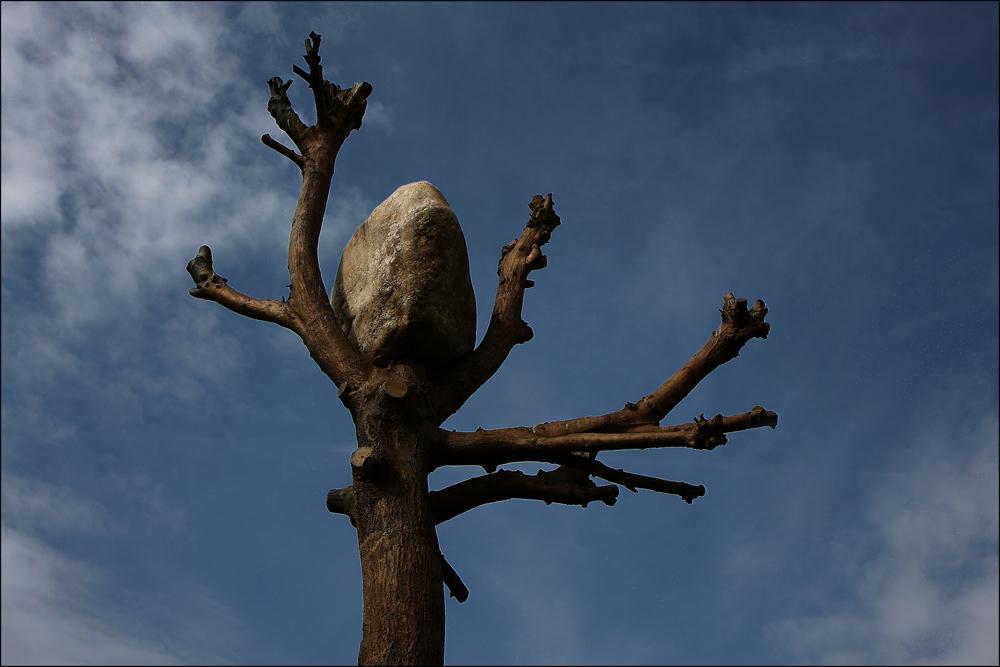 Ansichten eines Steins . . .