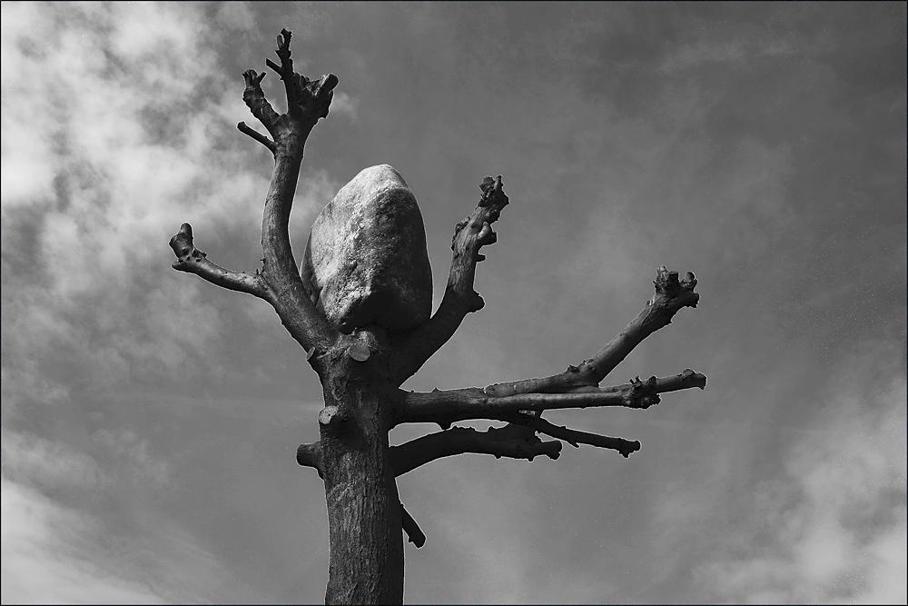 """"""" Ansichten eines Steins """""""