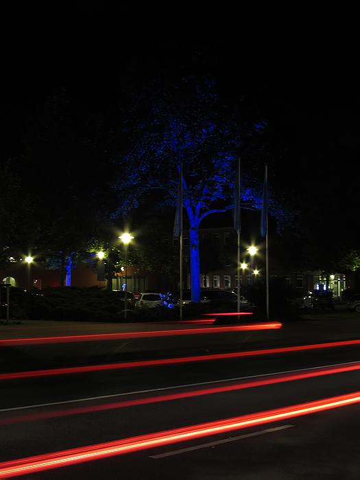 Anstelle der blauen Nacht mal ein blauer Baum