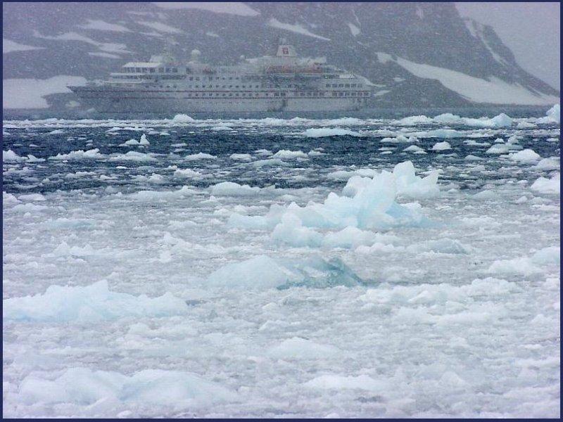 Antarktis  2: Im Sommer.