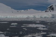 Antarktis II  DSC_0611