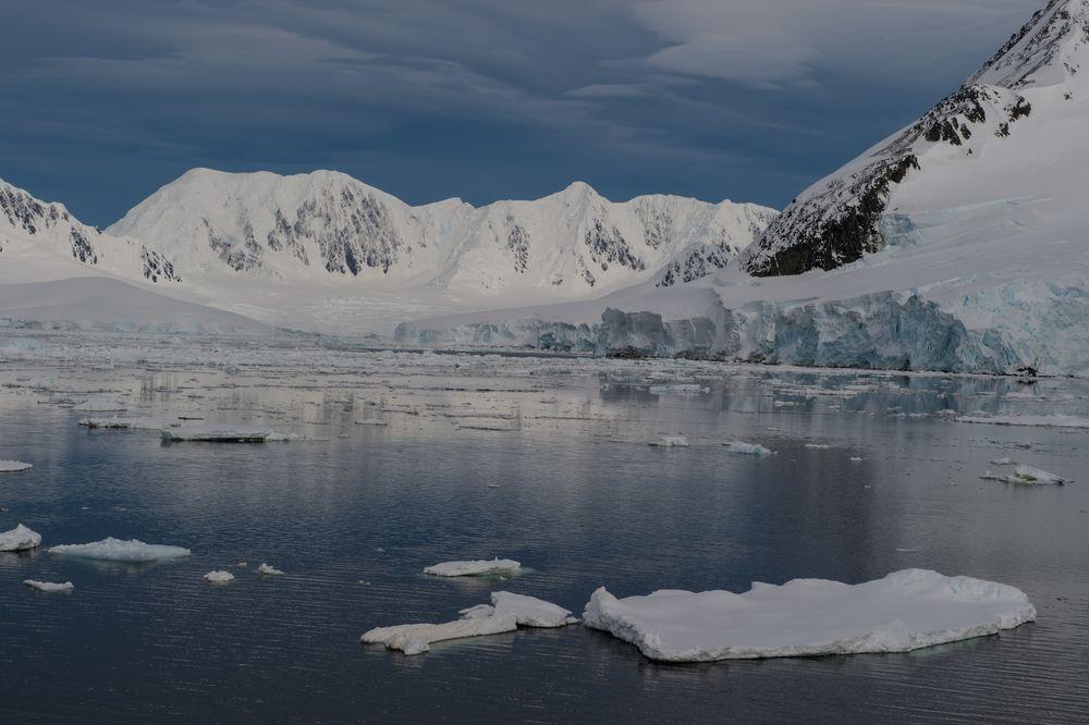 Antarktis und Eis  DSC_0617