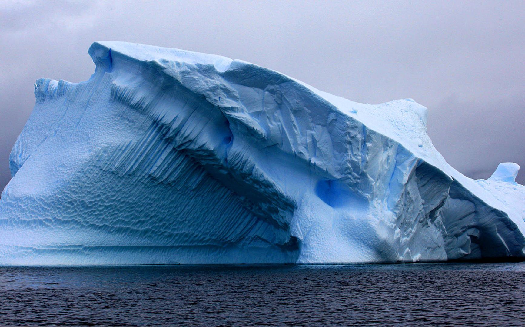Antártica salvaje