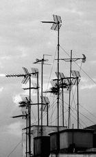 antenas2