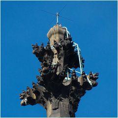 Antenne Köln