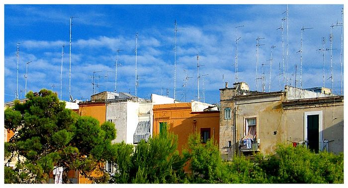 Antennenwald in Bari