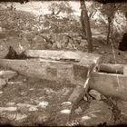 Antiguas fuentes de Porcuna (Jaen)3