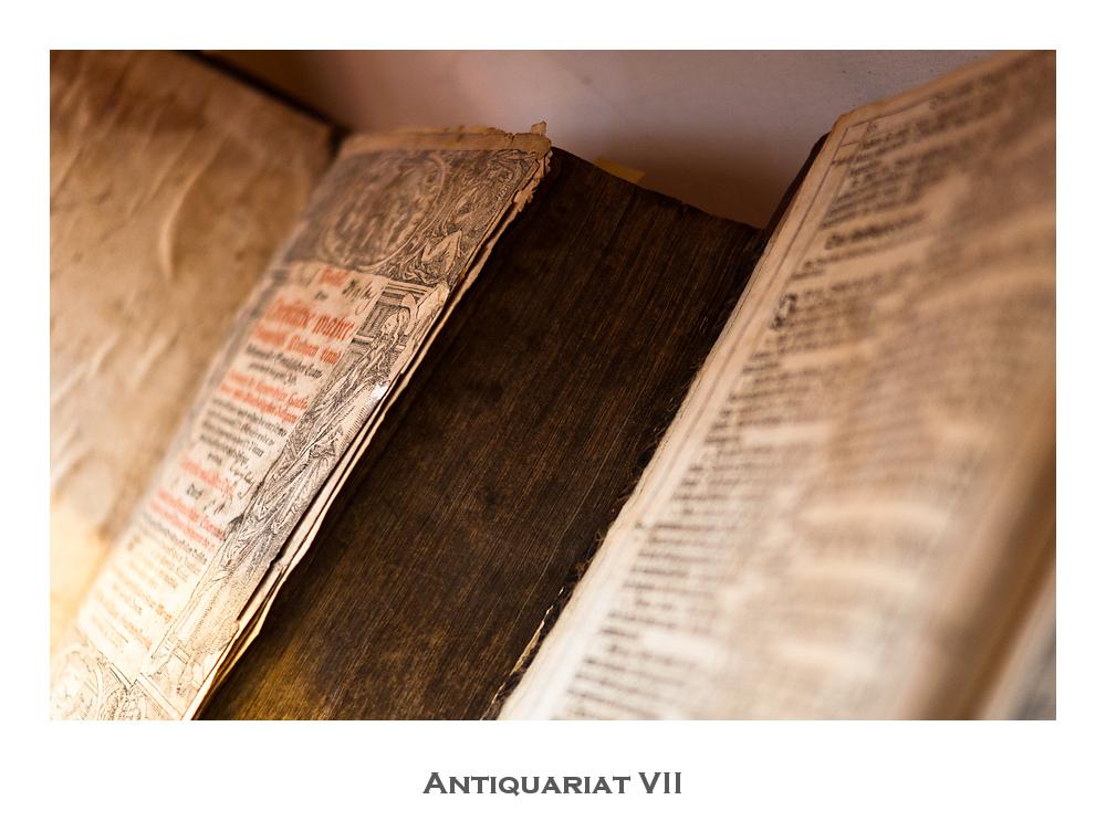 Antiquariat VII