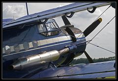 "Antonov AN 2 - ""Anna"" (2)"