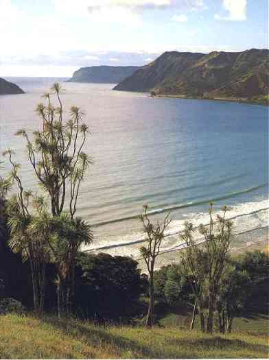 Anura Bay
