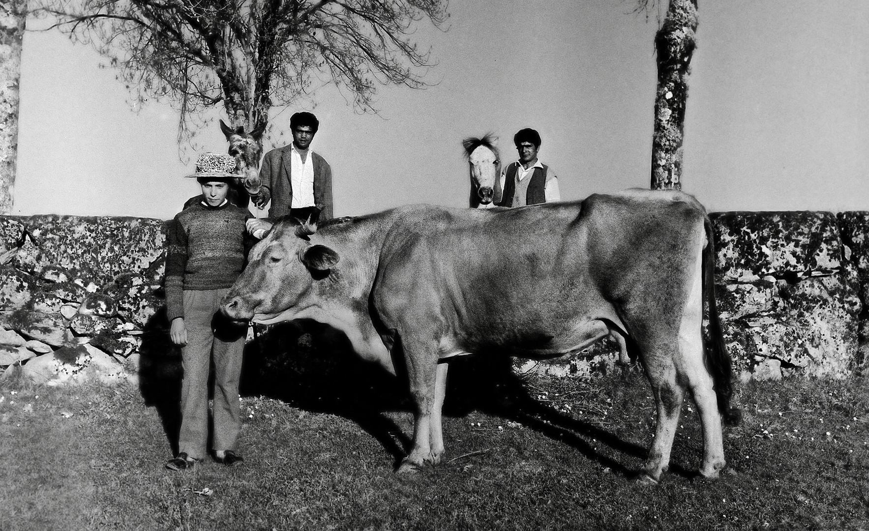 Año 1.968 - LA BELLA PASTORA Y LOS GITANOS