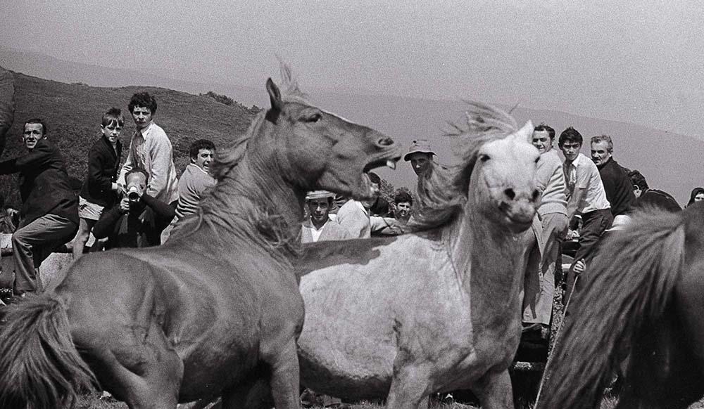 Año 1.973- Rapa das bestas