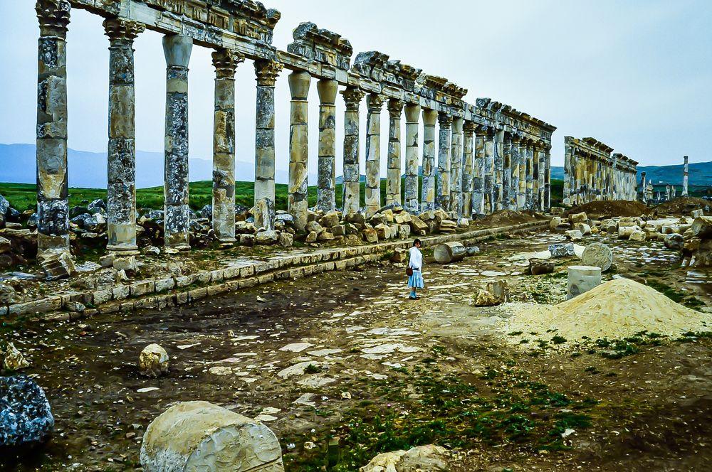 Apameia, Syrien..   .120_3920