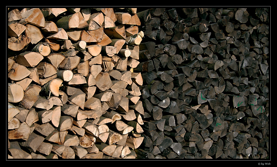 Apartheid in Holz