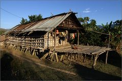 apatani - house