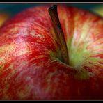 Apfel, äpple, apple, eple, æble,omena, pomme, mela, elma
