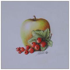 Apfel & rote Johannisbeere