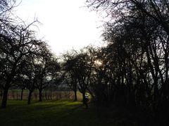 Apfelberg