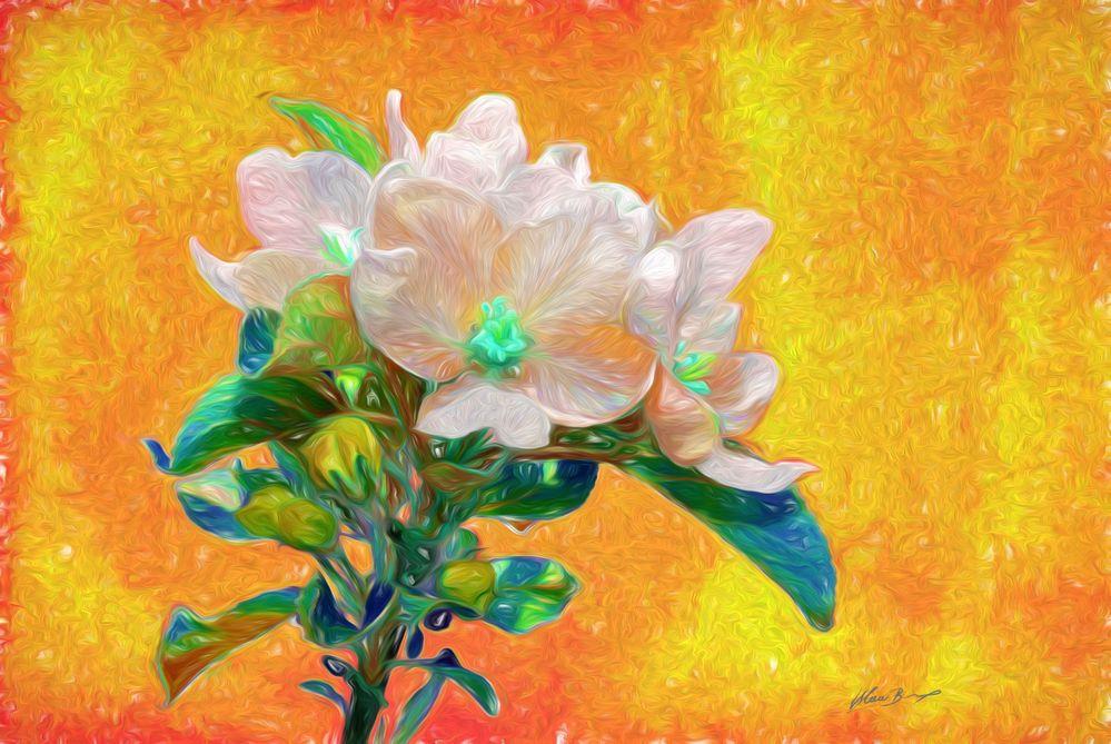 Apfelblüte-Flowerpower