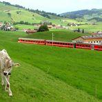 Appenzellerland...01