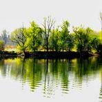 apple-green island