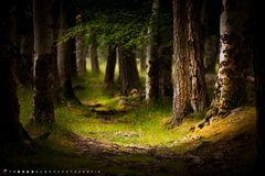 Applecross Woodland Walk