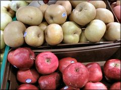 Apples of Alcobaça,  taste of Portugal.
