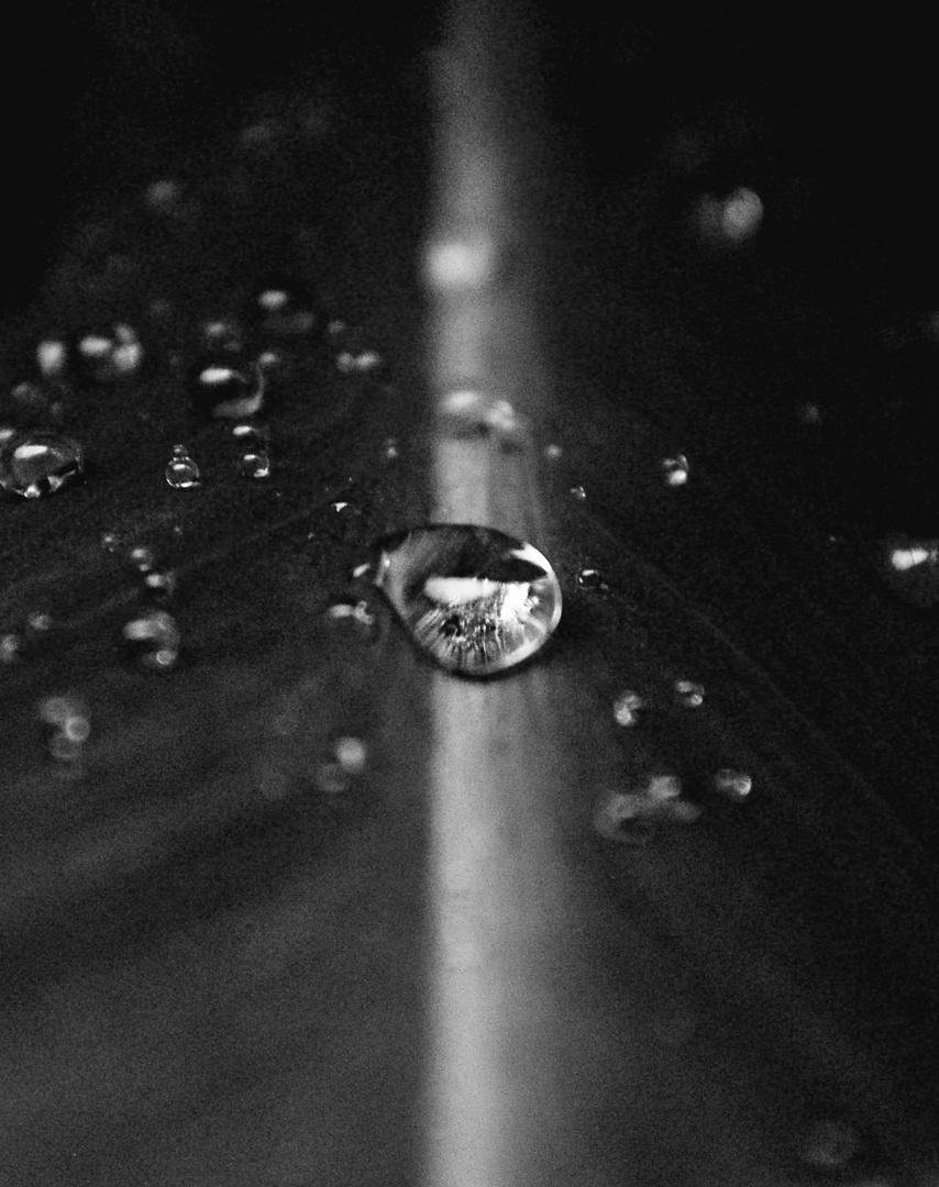 Après la pluie bis