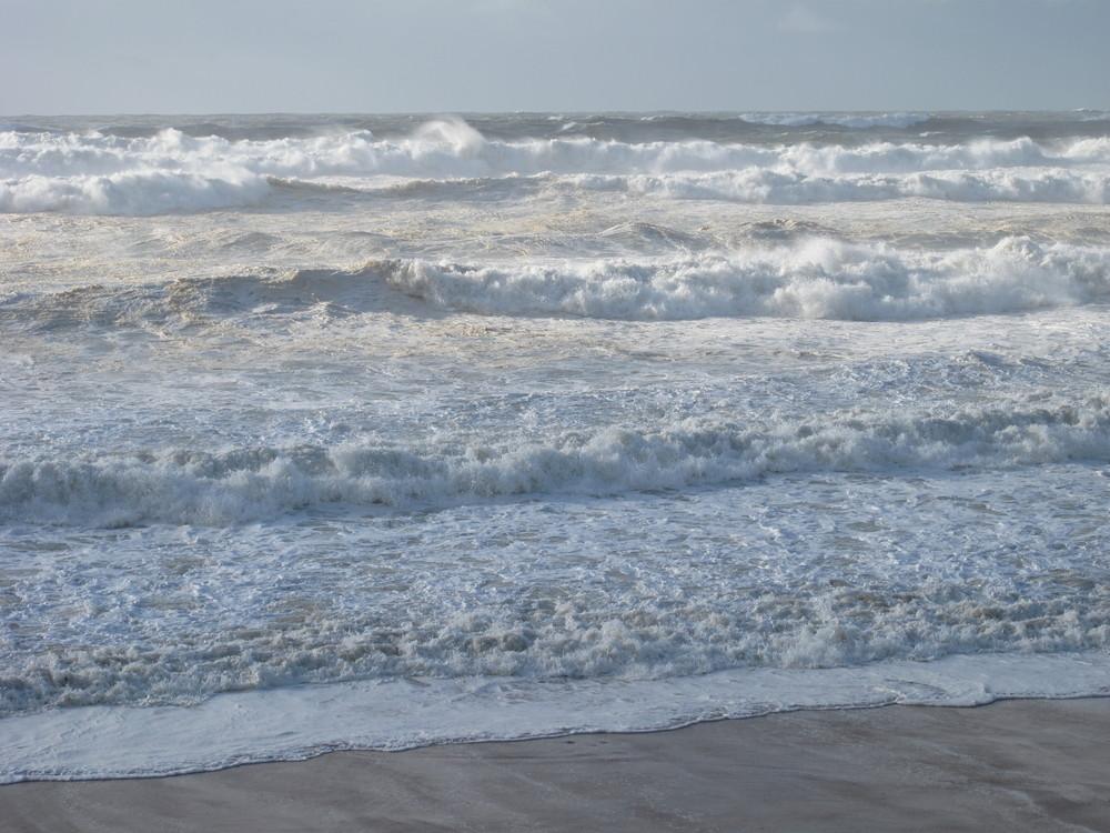 après la tempête... du 24 janvier à lacanau