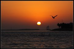 April Fool's Day Sunset in Key West
