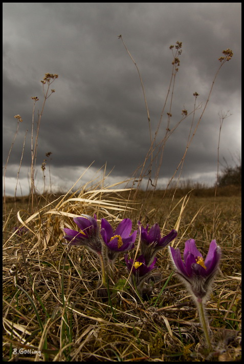 Aprilwetter