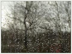 aprilwetter im februar...