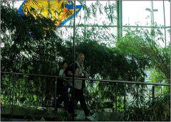 ... Aquarium ... Barcelona ...