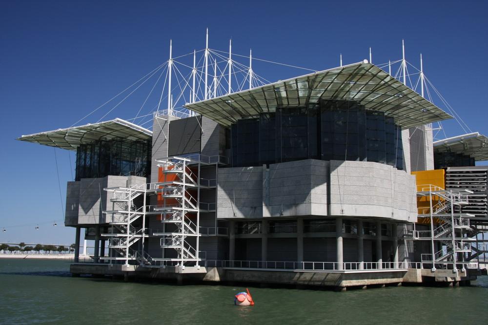 """Aquarium """"Modern Design"""" (Lisboa 2008) ..... mit Taucher ;-))"""