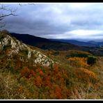 Arantzazu en otoño - DEDICADA A MILKETA con todo cariño por su fidelidad y lindos comentarios.